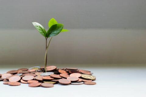 quasar-x-ti-aiuta-nella-gestione-amministrativa-e-finanziaria-della-tua-azienda-contabilità-fatturazione-cespiti-e-molto-altro